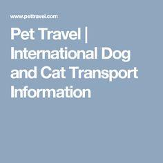 Pet Travel | International Dog and Cat Transport Information