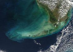 More ocean acidification, less coral?