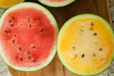 Back To Organic – Yellow Watermelon Wonder