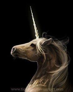Unicornio by TigApple: