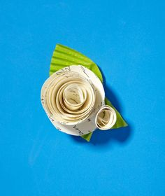 Paper as Boutonniere