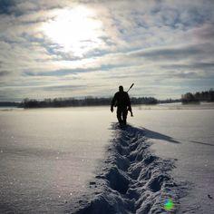 #rävjakt #nordiskjakt #nordichunter #jakt #P4H  #nature #hunting by tommikaivooja
