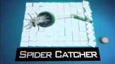 Awesome Gadgets And Gizmos: Spider Catcher - YouTube