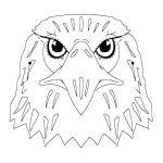 Animal Eagle Coloring Pages : Eagle Head Coloring Pages