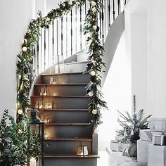 Fir & Snowberry Garland - 6ft   The White Company