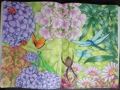 """Livre """"Eté"""" Hachette - Crayons de couleurs Polychromos"""
