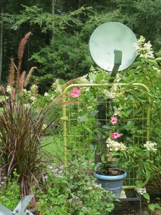 This is proof that anything can be garden decor!