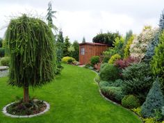 Tips On Finding The Best Landscape Supply Deals Evergreen Landscape, Small Garden Landscape, Evergreen Garden, Landscape Design, Garden Design, Back Gardens, Small Gardens, Outdoor Plants, Outdoor Gardens