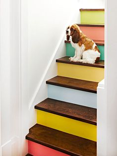 Painted stair case!! Love it, but I think it would only work in a simple home, again with not much clutter... ;P