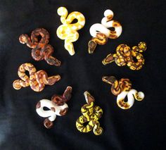 It seems the most popular reptile pet has become the ball python, and although I don't own one myself I made these for the Cold Blooded Creations art sh. Polymer Clay Kunst, Cute Polymer Clay, Polymer Clay Animals, Cute Clay, Polymer Clay Charms, Diy Clay, Wire Crafts, Clay Crafts, Arts And Crafts
