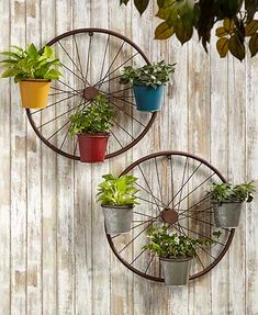 "Create a unique display on a wall inside or outside of your home with this Metal Bicycle Wall Planter. It's a bike wheel with 3 pots (5-1/8"" dia. x 4-1/2""H) tha"