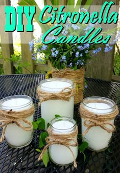 These DIY Citronella Candles are a FANTASTIC Natural Mosquito Repellent! They're super easy to make too! Say farewell to mosquitoes! These DIY Citronella candles are a fantastic natural mosquito repellent, make a great gift and work fantastic! Diy Mosquito Repellent, Natural Mosquito Repellant, Insect Repellent, Diy Christmas Gifts For Family, Diy Gifts For Kids, Kids Christmas, Citronella Candles, Oil Candles, Homemade Candles