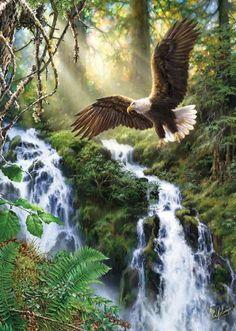 Jigsaw Puzzles - Soaring Eagle