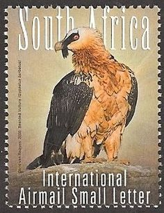 (Big 5 of Birds - Bearded Vulture) Small Letters, Vulture, Birds Of Prey, Stamp Collecting, Postage Stamps, South Africa, World, Artwork, Big 5
