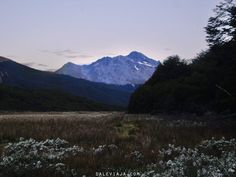 Cerro Castor en Ushuaia Ushuaia, Patagonia, Mountains, Nature, Travel, Beavers, End Of The World, Fire, Naturaleza