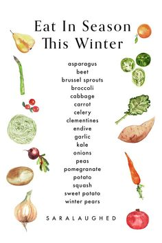 [original_tittle] – Kelly Belvis [pin_tittle] Which vegetables are in season in winter? A graphic featuring a list of seasonal vegetables including beet, endive, and potatoes. Season Fruits And Vegetables, List Of Vegetables, Winter Vegetables, Fruit In Season, Eating Vegetables, Healthy Snacks, Healthy Eating, Healthy Recipes, Healthy Nutrition
