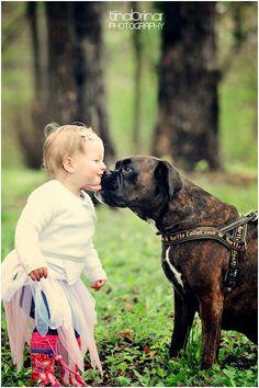dog baby kiss