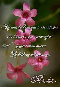 mensajes positivos positivos mensajes reflexiones http://ift.tt/2wLn23Q