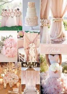 1. The Hottest Wedding Color: Blush This year brides were definitely blushing! Think soft shades of nude, peach, and blush taking center stage.