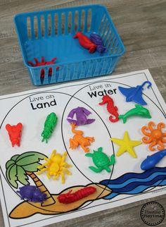 Activities for toddlers, preschoolers. Venn Diagram Sorting Kindergarten Math Game you can find similar pins below. Sorting Kindergarten, Measurement Kindergarten, Measurement Activities, Kindergarten Activities, Ocean Activities, Animal Activities, Montessori Activities, Toddler Activities, Sorting Activities