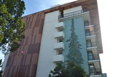 The Epiphany Hotel features a large redwood tree on the exterior.  #travel #paloalto #california
