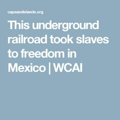 This underground railroad took slaves to freedom in Mexico | WCAI