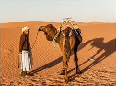 As the frost begins in the UK, I am reminded of the nights now in theSahara which do get very cold, but wrapped up in your sleeping bag in the middle of the spectacular dunes of the Moroccan desert, miles from modern life the mornings are