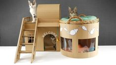 How to make Amazing Kitten Cat Pet House from Cardboard My kittens don't let me make a match house. In this video, I show you how to build a modern 2 floor cardboard house for kittens, puppies, cats or dogs. Cardboard Cat House, Cardboard Crafts, Cardboard Boxes, Kittens Playing, Cats And Kittens, Cats Meowing, Birman Kittens, Cats Bus, Siamese Cats