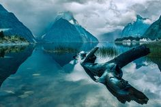 Milford Mirror (The calm waters of Milford Sound, New Zealand as seen from next to the lodge.) - by Chris Pocock