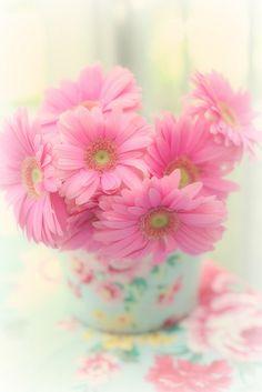 pretty in pink - Maria Starzyk