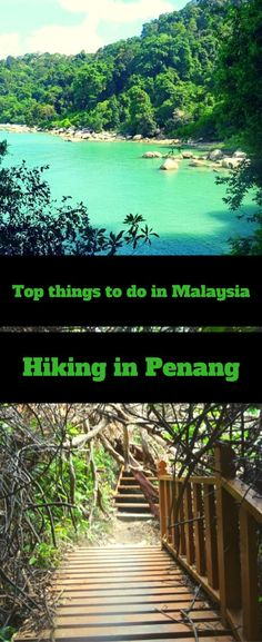 Penang National Park   best hiking trails   travel tips Malaysia     jungle rain forest   beaches Penang Malaysia   Hiking in Penang   Trekking in Penang   Best trails in Malaysia   Best Beaches   Visit Penang   Visit Georgetown   Travel Penang  