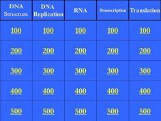 200 300 400 500 100 200 300 400 500 100 200 300 400 500 100 200 300 400 500 100 200 300 400 500 100 DNA Structure DNA Replication RNA Transcription Translation.