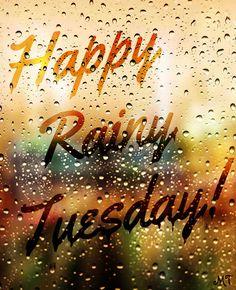 Happy Rainy Tuesday Quote                                                       …