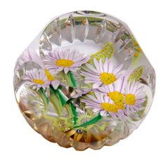 Caithness Paperweight 'caithnessglass.co.uk' ❤❦❤Pretty Daisies❤❦❤