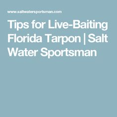 Tips for Live-Baiting Florida Tarpon | Salt Water Sportsman
