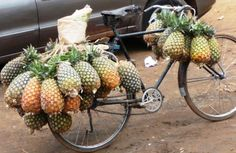 The only thing better then a bike is a bike covered with pineapples. Pineapples on Wheels - Kampala and Entebbe, Uganda Uganda Travel, Pineapple Express, Rare Birds, Bicycle Race, East Africa, African Beauty, Cool Places To Visit, Kenya, Transportation
