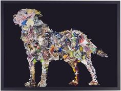 Peter Madden  Golden Retriever    2007  found images, framed  600 x 790mm