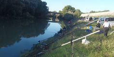 Campo gara di pesca al colpo e pesca a feeder sul Volturno a Capua. Tratto in questione è quello di Paperino. Pescosità, caratteristiche del posto