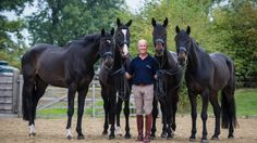 Andrew Hoy unveils stunning new yard   Horse and Country TV