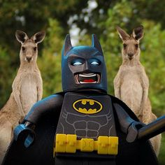 Roo selfie. How mad would Alfred be if I brought one of these home? Dont miss my awesome movie now in cinemas down under! ...
