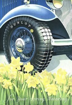 Dunlop Tires For Your Spring Morning Daffodils - www.MadMenArt.com | Through this graphic art, we witness economic upturns, encounter delighted people and catch a glimpse inside fully stocked refrigerators. #Advertisement #Goods #Vintage #Ads #VintageAds #VintageGoods