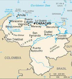 División Político Territorial del Estado.: Division Politico Territorial del Estado Venezolano.