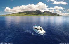 Maui Sport Fishing with Maui Fun Charters. Deep sea fishing adventure on a boat!