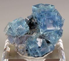 Minerals And Gemstones, Rocks And Minerals, Natural Crystals, Stones And Crystals, Gem Stones, Blue Crystals, Beautiful Rocks, Mineral Stone, Rocks And Gems