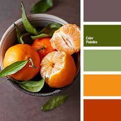 """dusty"" brown, brown color, color matching, dark green color, designer palettes, green shades, lime color, olive shades, orange color, orange shades, palettes for designers."