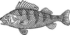 fish stencils free - Google Search