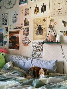 Room Ideas Bedroom, Bedroom Inspo, Bedroom Decor, Cute Room Ideas, Cute Room Decor, Indie Room Decor, Study Room Decor, Pretty Room, Room Goals
