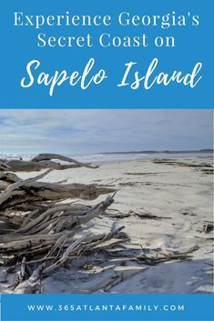 is a remote island only accessible by boat. In addition to undeveloped beaches visit the Reynolds Mansion, the Sapelo Island light house & a tiny community Hog Hammock, where the island Gullah Geechee culture is still alive and well. Best Family Beaches, Culture Travel, Travel Inspiration, Travel Ideas, Travel Tips, Where To Go, Travel Usa, Day Trips, Family Travel