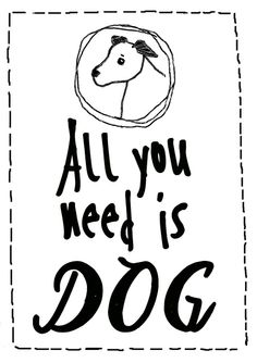 All you need is dog