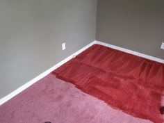 How to Dye Carpet using Rit Dye and a Carpet Cleaner. Such a money saver if you don't like the color, but the carpet is still good..